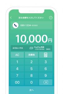 PayPay ID送金画面