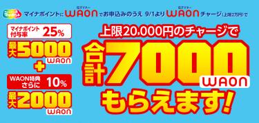 マイナポイントにWAONを紐づける理由|最大2,000円分プラスオン!