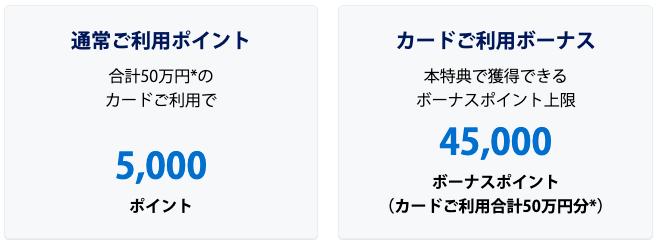 アメックスゴールドキャンペーン内訳
